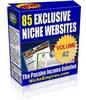 Thumbnail 85 Niche Adsense Affiliate Ready Websites V2 - MRR